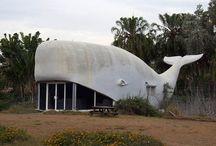 STRANE HOUSE