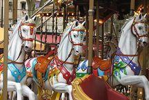 Carousel....Merry-Go-Round / by Jennifer Findlay
