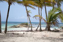 Iles de Rêve / Guadeloupe