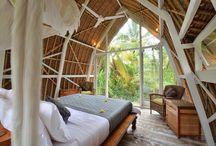 Tropical tiny house
