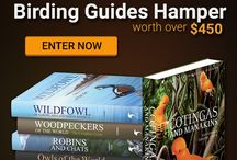 Bloomsbury Birding Hamper / Enter to win this amazing Bloomsbury Hamper of top class Birding ID & Photographic Guides worth over $450.00! All you have to do is fill out a simple form over here: http://www.rockjumperbirding.com/competitions/bloomsbury-book-hamper-competition-2016/, and you could stand a chance of winning this great prize.