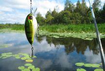 ➤ FISHING