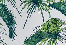 Tropical BAHAMAS