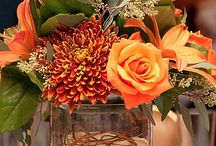 Fall decor / by Cheryl Palomo