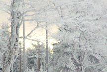 Winter wonderlands and all things Scandinavia