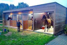 Kone  a ohrady