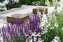 Garden ideas / Colourful