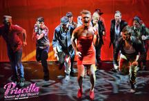 Priscilla Queen Of The Desert / Manchester Musical Theatre