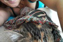 Puppies  && kitties