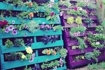 Pallet Project / by Ashlee Redshaw