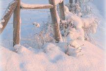 Talvikonsertti