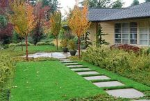 Front Yard Ideas / Landscaping / by Christophile Konstas