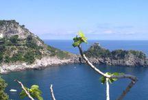 Amalfi Coast Villages (30 km. from B&B) / Amalfi Coast Villages #amalfi #amalficoast #costamalfitana #maiori #minori #concadeimarini #cetara #atrani #praiano #furore #beach #travel #italy / by B&B Pompei Il Fauno