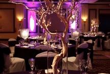 Brookes wedding / by Sarah DeGanna