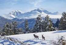 Estes Park Winter / Find activities and things to do in Estes Park and Rocky Mountain National Park in the winter!