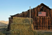 beautiful old barns / by Tracy Teeter