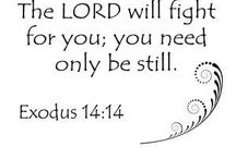 Bible verses / by Sherri Mackinson
