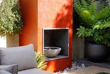 Lush, tropical and vibrant garden