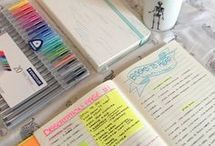 Organizar los estudios