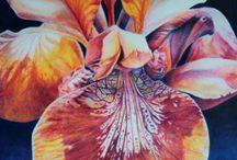 aquarel pencil