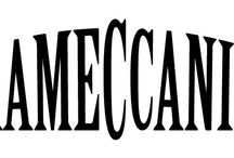 erameccanica / this is what we sell, this is what we believe in