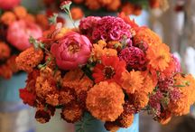 Marigold Wedding Ideas