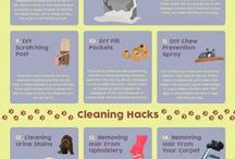 Cleaning for Pet-owners
