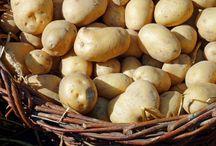 dieta s brambory a jogurtem na 3 dny