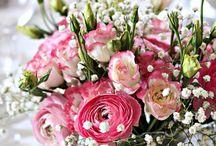 Цветы на фото / Фотографии цветов