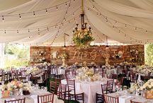 Wedding Florals & Aesthetisc