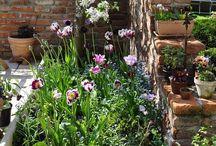 Garden cafe corner