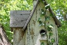 Birdhouses / For Birds / by Victoria Phelps