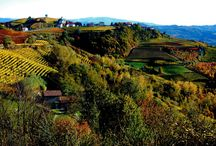 La Ginestra / Resently renovated stonhouse in the Langhe area Piemonte Italy in midle of winefields and beautiful landscape