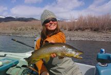 North America Fishing Destinations / by Alaska's Wilderness Place Lodge