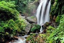 Visiting Sri Lanka / Visiting Sri Lanka has to be on everyone's must do list #Travel #SirLanka #ContentedTraveller