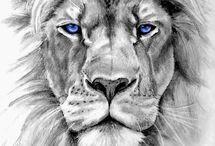 løve og skytten