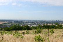 scenery / Moments of Nature Bratislava Slovakia