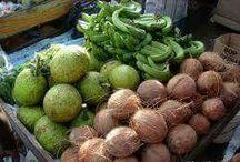 Grenada #CoconutWire