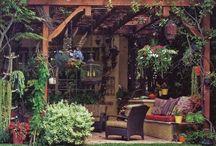 Garden / Gardening tips and inspirations