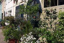 facades planting
