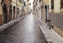 Florenz / by Christel Romahn