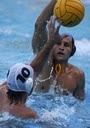 UCLA / UCLA Water Polo / by Ingrid Blanchette