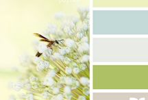 Color Schemes / by Amanda Creek