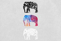 collecting | elephants