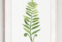 Растения рисунки