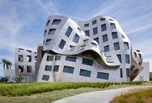 DVC 1 - Influential Designer - Frank Gehry