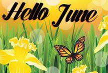 June / Hello June