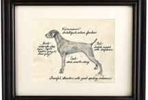 My Love For Weims / by Nicole Costello
