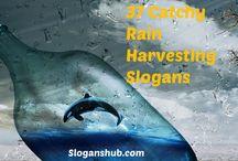 Water Slogans