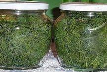 Fűszer- gyógynövények